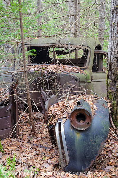 Abandoned pickup truck in forest of Franconia, New Hampshire during the spring months. This is possibly a late 1930s / 1940s Chevrolet or GMC truck.