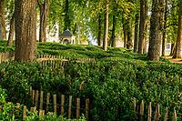 France, Sarthe (72), Le Lude, château et jardins du Lude, labyrinthe en sous-bois