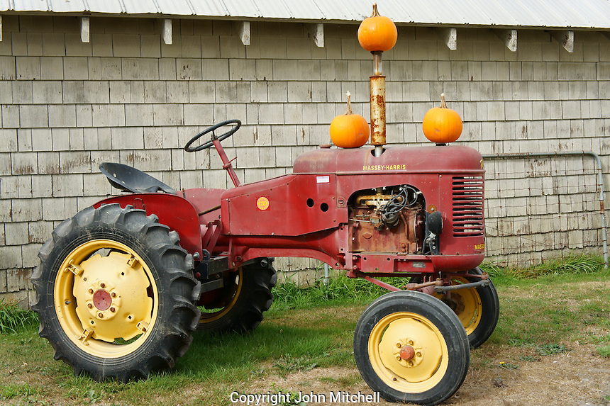Old Massey Harris tractor decorated with pumpkins, Ladner, British Columbia, Canada