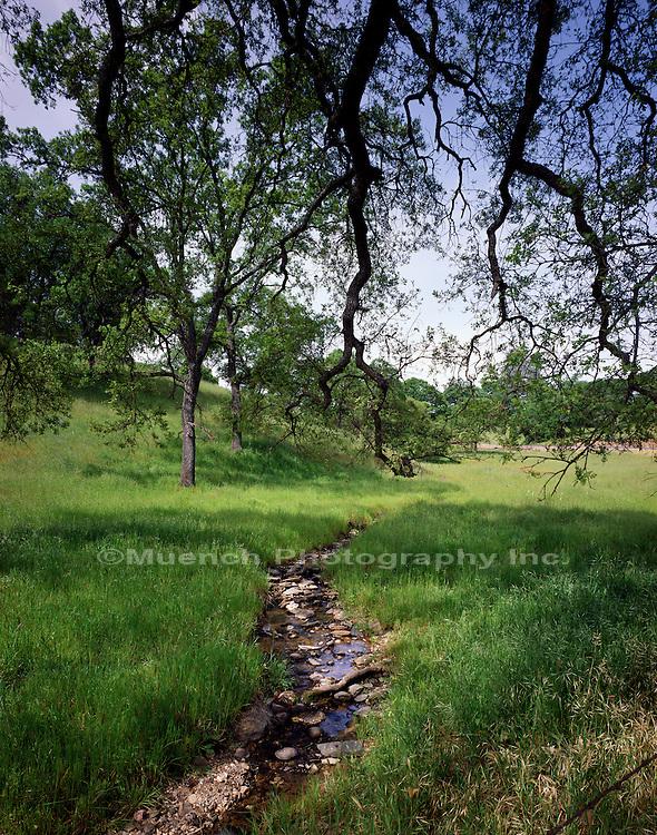 Motherlode Country, Sierra Nevada Westside