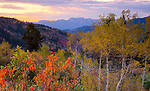 Idaho, Eastern, Swan Valley. An autumn evening in the Caribou Mountains.