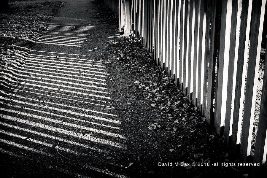 1.15.17 - Through The  Fence...