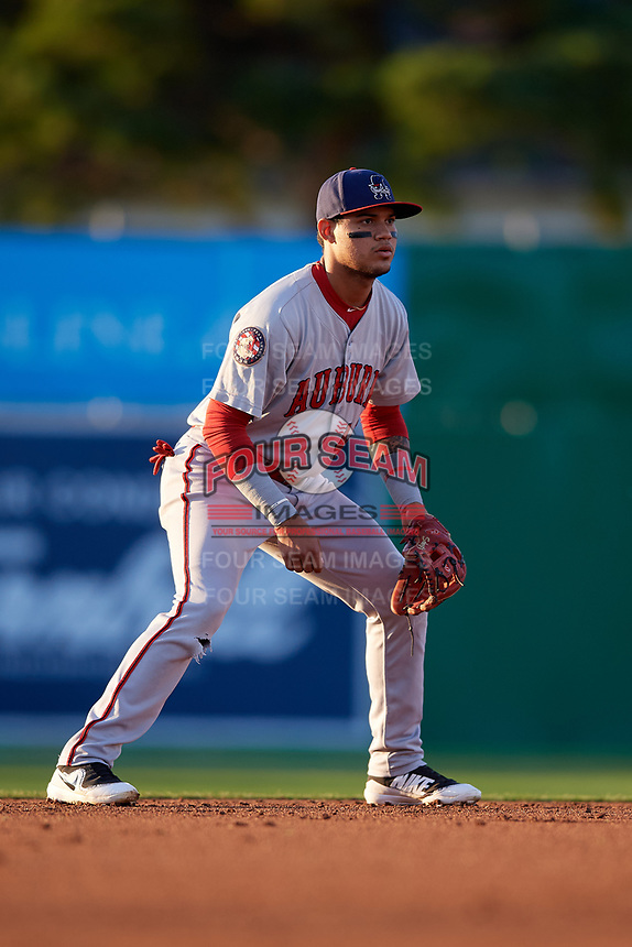 Auburn Doubledays shortstop Jose Sanchez (44) during a NY-Penn League game against the Batavia Muckdogs on August 31, 2019 at Dwyer Stadium in Batavia, New York.  Auburn defeated Batavia 12-5.  (Mike Janes/Four Seam Images)
