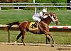 Deebal winning at Delaware Park on 7/17/14