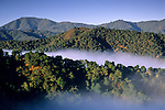 Coastal fog, oak trees, and hills, Cachaqua Road, above Carmel Valley, Monterey County, California