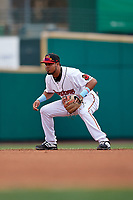Rochester Red Wings shortstop Luis Arraez (9) during an International League game against the Charlotte Knights on June 16, 2019 at Frontier Field in Rochester, New York.  Rochester defeated Charlotte 3-2 in the second game of a doubleheader.  (Mike Janes/Four Seam Images)