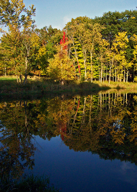 Fall in all its glorious colors of golds and reds against a blue sky is reflected in the waters of a small lake Postenkill, New York