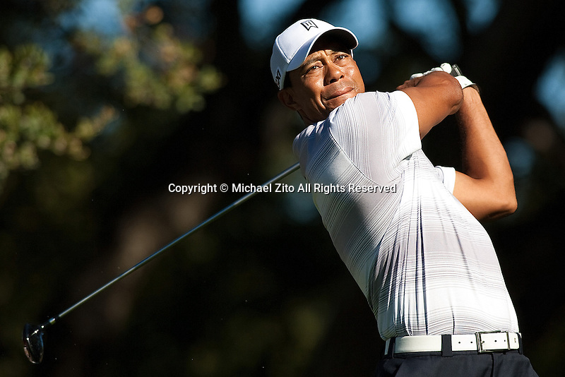 11/30/11 Thousand Oaks, CA: Tiger Woods during the Pro-AM round at the Chevron World Challenge held at the Sherwood Country Club.
