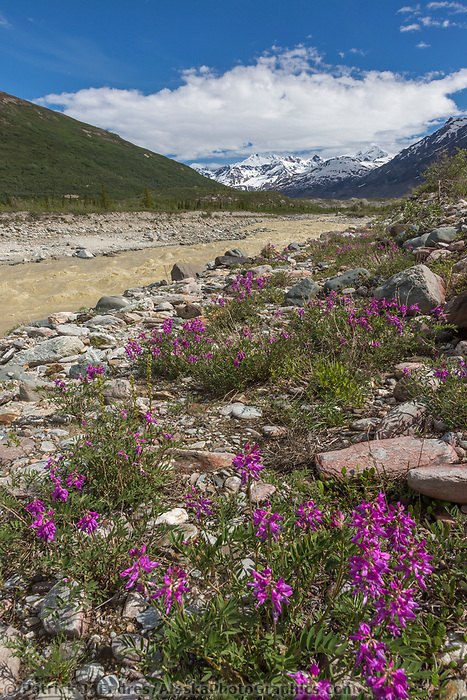 Alaska Range mountains, Interior Alaska.