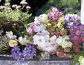 Interlitho, FLOWERS, BLUMEN, FLORES, photos+++++,bunch of flowers,KL16418,#f#