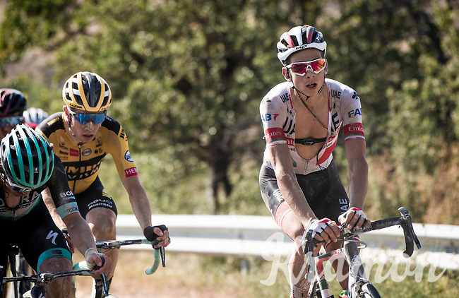 eventual runner-up Davide Formolo (ITA/UAE-Emirates) in-race next to eventual winner Wout Van Aert (BEL/Jumbo-Visma) earlier in the race<br /> <br /> 14th Strade Bianche 2020<br /> Siena > Siena: 184km (ITALY)<br /> <br /> delayed 2020 (summer!) edition because of the Covid19 pandemic > 1st post-Covid19 World Tour race after all races worldwide were cancelled in march 2020 by the UCI