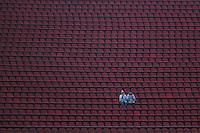 SAO PAULO, SP, 25.05.2014 - CAMP. BRASILEIRO - SANTOS X FLAMENGO - Torcedores  do Santos durante partida contra o Flamengo jogo valido pela setima rodada do Campeonato Brasileiro no Estadio Cicero Pompeu de Toledo, Morumbi na tarde deste domingo, 25. (Foto: William Volcov / Brazil Photo Press).