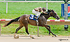Over My Head winning at Delaware Park on 7/3/13