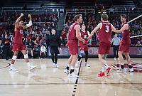 STANFORD, CA - March 2, 2019: Jaylen Jasper, Eli Wopat, Paul Bischoff, Kyler Presho, Jordan Ewert, Kyle Dagostino at Maples Pavilion. The Stanford Cardinal defeated BYU 25-20, 25-20, 22-25, 25-21.