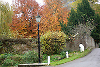 A wide range of autumn colours, an old fashioned lamp-post and a chain link fence at Chenies Bottom, Buckinghamshire, England.