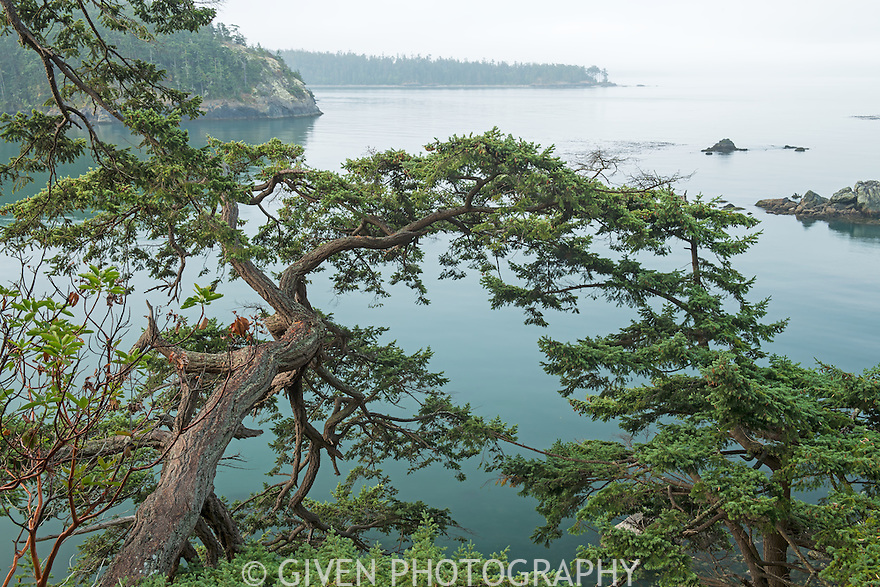 View of Deception Pass with fog