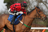Islandofhopendreams ridden by Will Kennedy in action during the Connolly's Red Mills Horsefeed National Hunt Novices' Handicap Hurdle