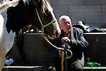 The horse market at Smithfield, Dublin takes place on the first Sunday of every month. People come from all over Ireland to trade horses and equipment. It's absolute chaos, with young kids galloping across the cobbles on distressed looking ponies, horses whinnying, gardai chasing jaunting cars on their bicycles. A big part of the horse scene involves the keeping of animals, by Dublin urban youth, in gardens or public areas. The Dublin Society for Prevention of Cruelty to Animals says that the market facilitates the sale of horses to under-16s, who are then unable - or unwilling to look after them. Amongst the dozens of horses visible, I did see a couple of examples of cruelty - the most obvious one of all was by an elderly man, kicking his pony in the stomach for no apparent reason. ....Editorial Use Only.....There's talks by Dublin City Council of moving the market out of the city - as Smithfield becomes increasingly gentrified, the more urbane of the urban dwellers in the surrounding apartments are apparently unimpresssed with the smell of horse shit once a month!