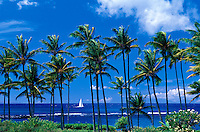 Sailboat is framed by palm trees at Kapalua, Maui.