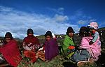 Amérique du Sud. Equateur. Trekking sur les volcans d'Equateur. Indiens dans les champs de pomme de terre pour la  minga (travail collectif au profit de la communauté) dans la région de Tigua.South America. Ecuador. Trekking on the volcanoes