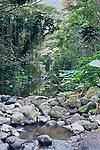 USA, HI, near Waimea, Waipio Valley