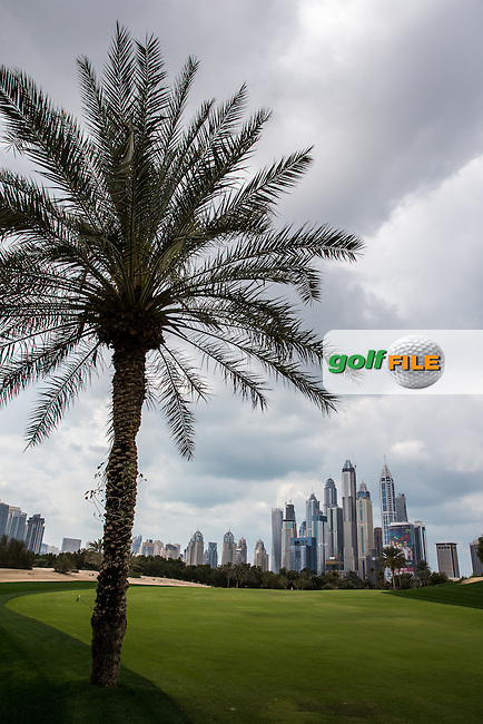 13th fairway ahead of the 2016 Omega Dubai Desert Classic played at the Emirates Golf Club, Dubai, United Arab Emirates.  30/01/2016. Picture: Golffile   David Lloyd<br /> <br /> All photos usage must carry mandatory copyright credit (&copy; Golffile   David Lloyd)