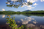 Summer view of Webb Lake and Mt. Blue, Mt. Blue State Park, maine, USA