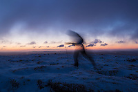 Silhouette of hiker on wintry summit of Corn Du at dawn, Brecon Beacons national park, Wales