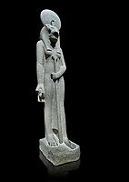 "Ancient Egyptian statue of goddess Sekhmet, grandodiorite, New Kingdom, 18th & 20thDynasty (1156-1150 BC), Thebes. Egyptian Museum, Turin. black background.<br /> <br /> Sekhmet, ""the Powerful One"" was a fearsome goddess symbolised by her lioness head. Daughter of the sun she personifies the disk of the world during the day. Sekhmet is the angry manifestation of Hathor inflicting the scourges of summer heat, famine and illness which is why the goddess needed to be exorcised every day. Drovetti Collection. C 251"