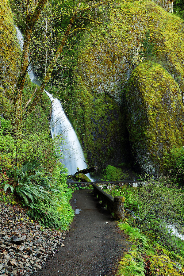 Wahkeena Falls and footbridge, Columbia River Gorge National Scenic Area, Oregon, USA