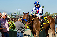 ARCADIA, CA. JUNE 17:  #6 Faypien ridden by Rafael Bejarano, wins the Summertime Oaks (Grade ll) on June 17, 2017 at Santa Anita Park in Arcadia, CA. (Photo by Casey Phillips/Eclipse Sportswire/Getty Images)