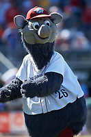 Lehigh Valley Iron Pigs mascot Ferrous entertains the fans during the game against the Durham Bulls at Coca-Cola Park on July 30, 2017 in Allentown, Pennsylvania.  The Bulls defeated the IronPigs 8-2.  (Brian Westerholt/Four Seam Images)