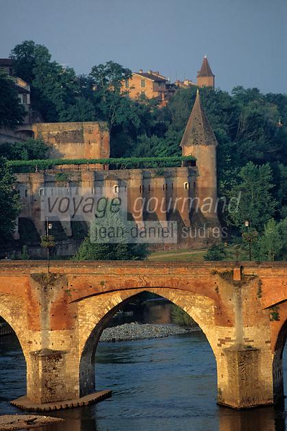 Europe/France/Midi-Pyrénées/81/Tarn/Albi: Le vieux pont et le Tarn