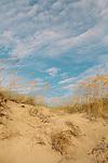 Sand dunes on Jekyll Island, Georgia.