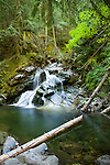 Idaho, North,Bonners Ferry, Kaniksu National Forest. Lower Snow Creek Falls in the Selkirk Range during low water flow.