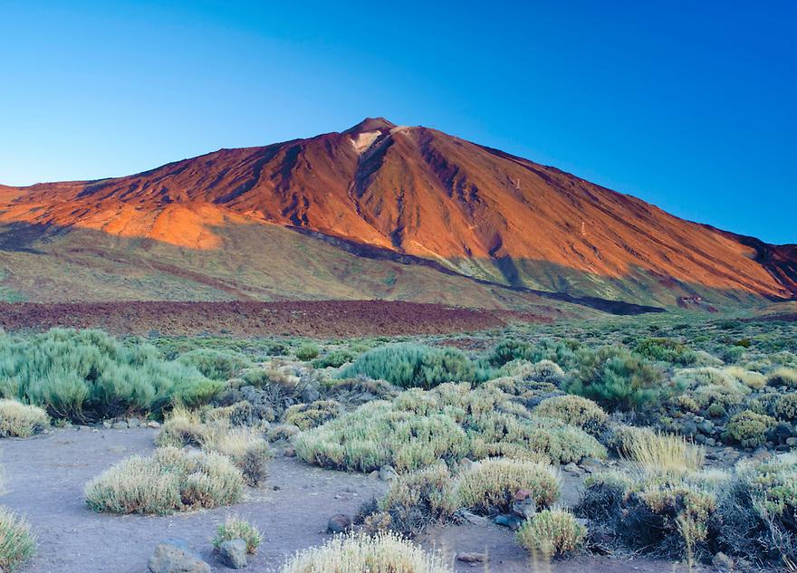 The Teide volcano (the highest mountain of Spain, 3.718 m), at sunrise. Teide National Park, Tenerife Island, Canary Islands, Spain.