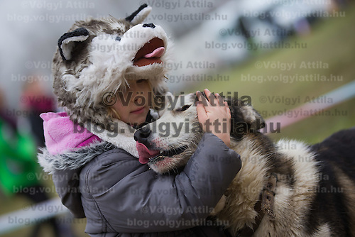 Girl in a dog shaped hat hugs her dog during the FISTC Dog Cart European Championships in Venek (about 136 km Norht-West of capital city Budapest), Hungary on November 22, 2014. ATTILA VOLGYI
