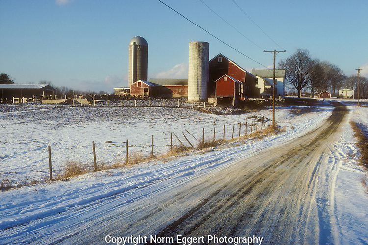 Farm in late afternoon light