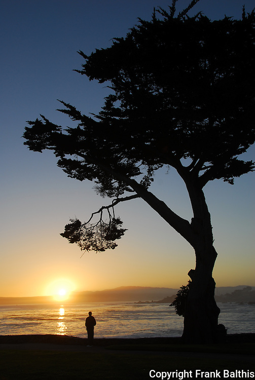 Man watching sunrise in Pacific Grove