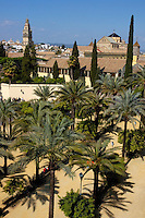 View of the city and Cathedral of Cordoba from the Alcazar of the Christian Monarchs, Cordoba, Andalusia, Spain.