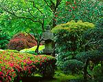 Portland, OR<br /> The Japanese Garden, Washington Park <br /> Lantern with azaleas in spring garden setting