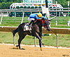 Uniquelyclassic winning at Delaware Park on 7/23/16