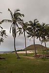 Chile, Easter Island: Anakena Beach, a white coral sand beach with palm trees and several restored moai or statues..Photo #: ch288-33855.Photo copyright Lee Foster www.fostertravel.com lee@fostertravel.com 510-549-2202