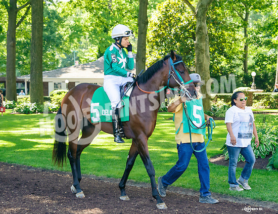 Brahms Secret before The Strike Your Colors Stakes at Delaware Park on 8/4/16