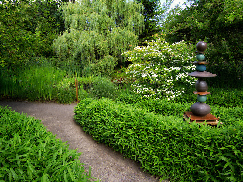 Path in garden near pond with blooming dogwood tree. Hughes Water Garden, Oregon