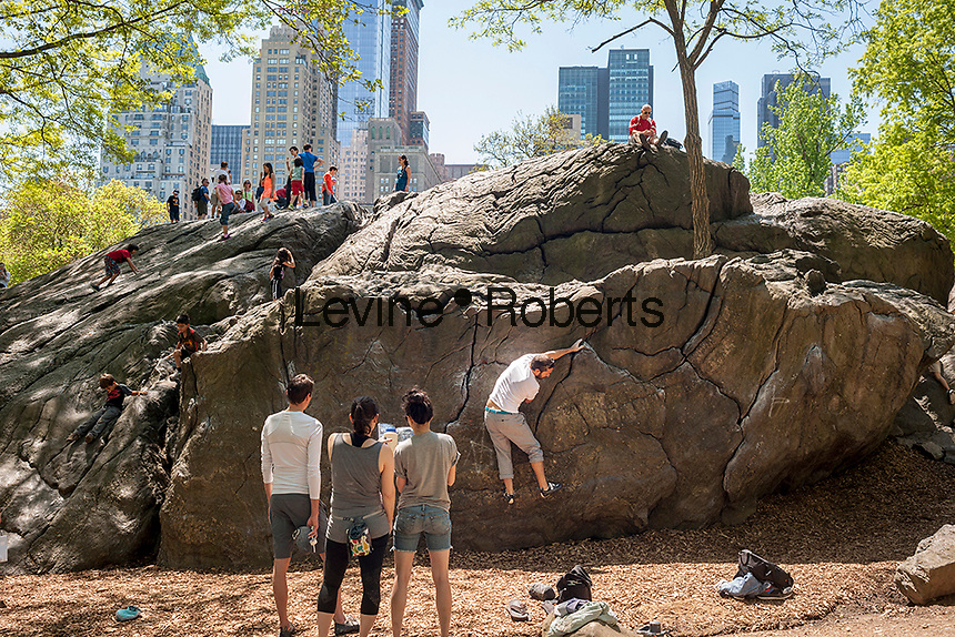 Bouldering enthusiasts on Rat Rock in Central Park in New York on Sunday, May 11, 2014. (© Richard B. Levine)