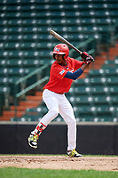 Willy Fana (10) at bat during the Dominican Prospect League Elite Underclass International Series, powered by Baseball Factory, on July 21, 2018 at Schaumburg Boomers Stadium in Schaumburg, Illinois.  (Mike Janes/Four Seam Images)