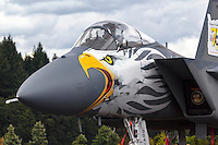 An F-15 Eagle of the 173rd Fighter Wing based at Kingsley Field in Klamath Falls in a commemerative paint scheme to celebrate the Oregon Air National Guard's 75th anniversary.