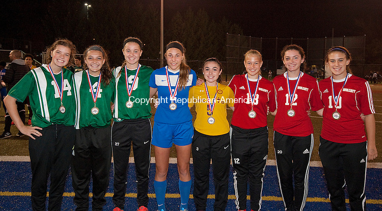 WATERBURY, CT--- -110515JS24--Members of the All-Brass Girls Soccer team, from left, Taylor Gilmore-Holy Cross; Julia Sheetz-Holy Cross; Kiley Harnish-Holy Cross; Jillian Kilmer-St. Paul; Nellie Drewry-Sacred Heart; Tiona Watts-Wolcott; Samantha Hickey-Wolcott and Taylor Riviezzo-Wolcott. <br /> Jim Shannon Republican-American