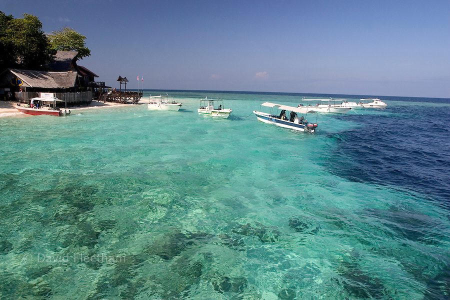 The drop-off is just a few feet off shore on Sipidan Island, Malaysia.